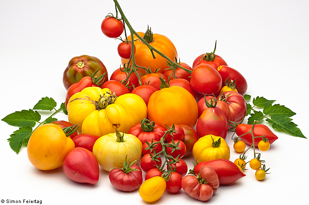 GOLDEN and SWEET! Aurantiacum Tomato seeds 5